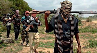 Arrested sect commander -Two Boko Haram factions ready for discussion.