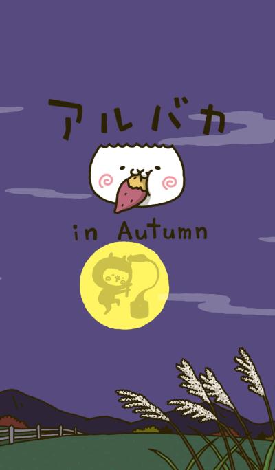 fool alpaca in Autumn (Theme)
