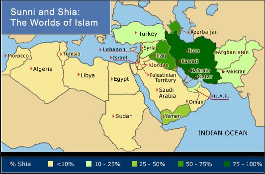 Difference in sunni and shia muslims