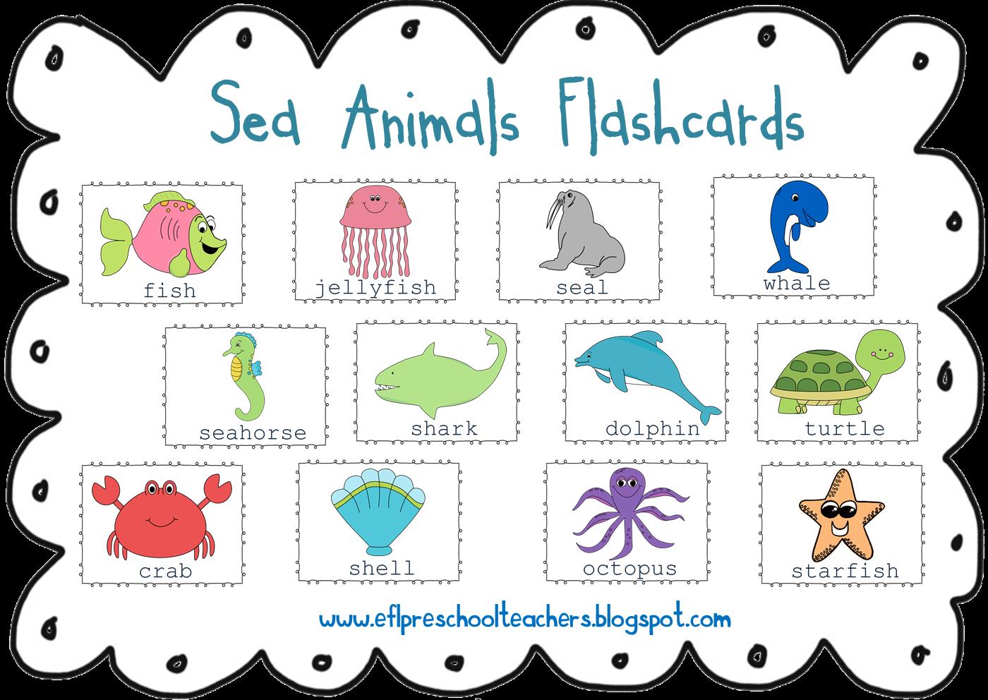 Esl Efl Preschool Teachers Sea Animals Ocean Theme For