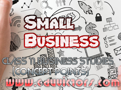 CBSE Class 11 - Business Studies - Small Business - Meaning and Nature (#cbsenotes)(#eduvictors)