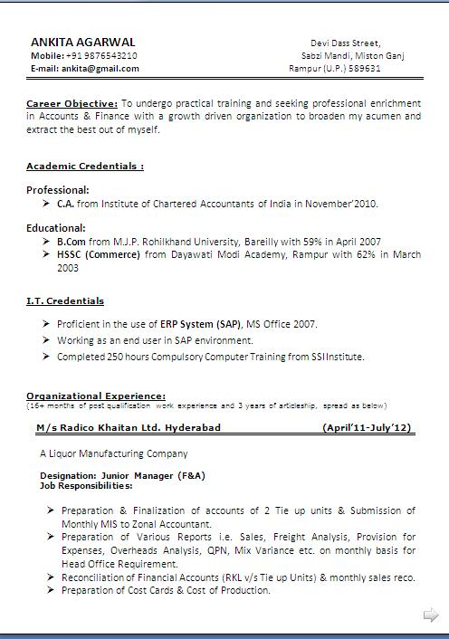 model resume format pdf download