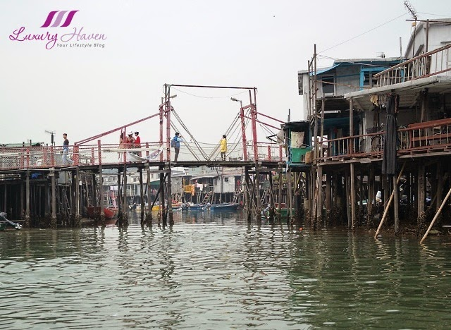 tai o waterway stilt houses sampan boat tours