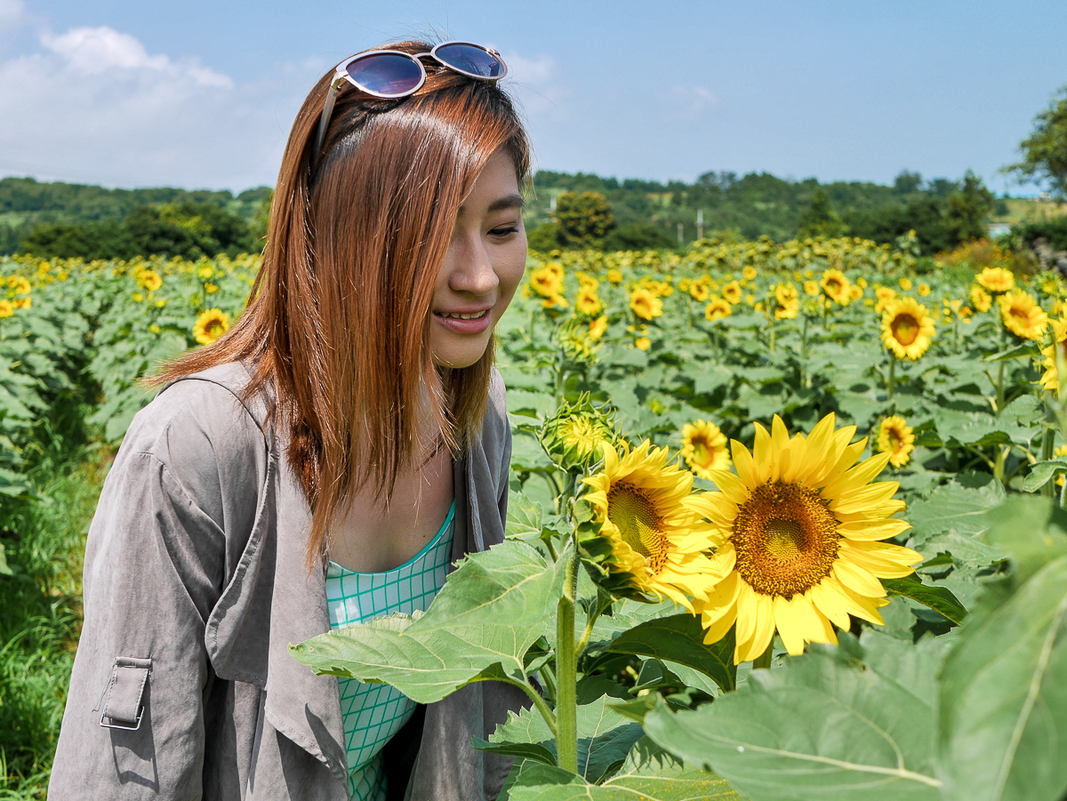 Kim kyung suk Sunflower farm jeju korea