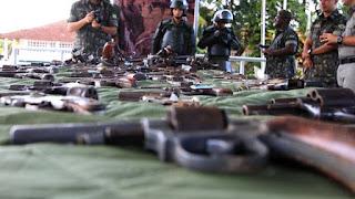 Deputado diz que Bolsonaro quer votar flexibilização de armas em 2019