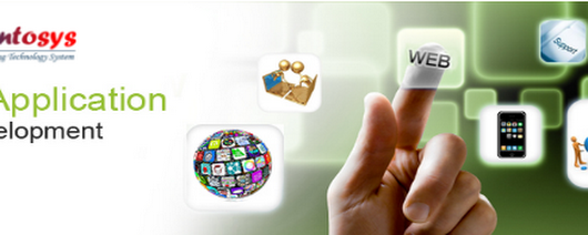 Benefits of The Web Application Development Company India