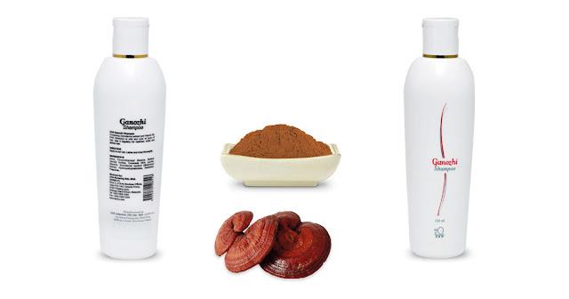 El DXN Ganozhi Shampoo con pH balanceado es apto para todos los tipos de cabello, Enriquecido con extracto de Ganoderma y vitamina B5; El DXN Ganozhi Shampoo es suave y hace que su cabello sea más sano, suave y saludable.