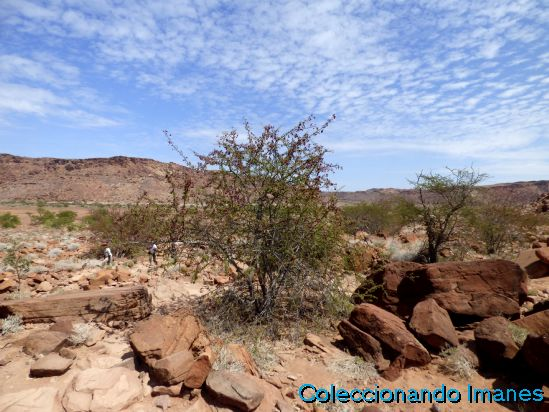 Petroglifos Twyfelfontein