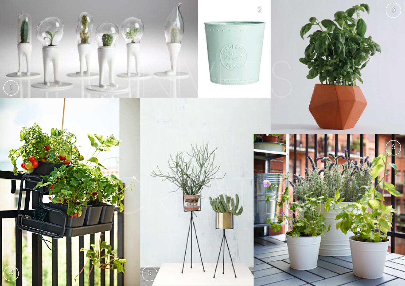 univers creatifs design trouver pot sa plante. Black Bedroom Furniture Sets. Home Design Ideas