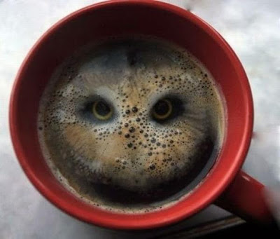 A Bird In Your Coffee
