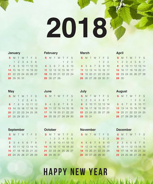 Happy New Year Calendar 2018
