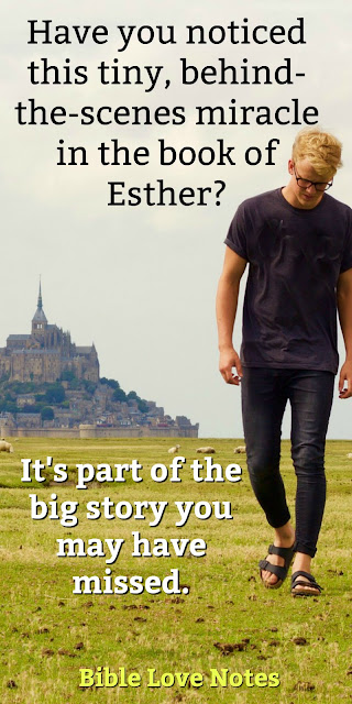 We all know the story of Esther, but you might have missed this tiny, behind-the-scenes glimpse of God working things for His purposes. Check it out and be blessed! #BibleLoveNotes #Bible