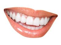 Tooth/ teeth (gigi)