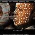 تحميل برنامج جوجول Nik Collection لتعديل وتحرير الصور بإحترافية