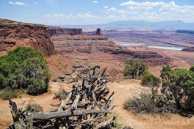 Dead Horse Point, Canyonlands National Park