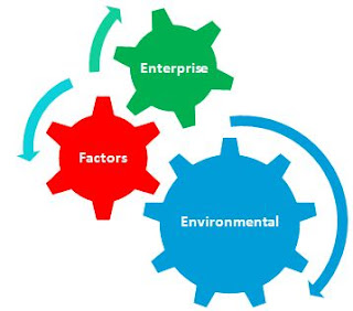 Enterprise Environmental Factors