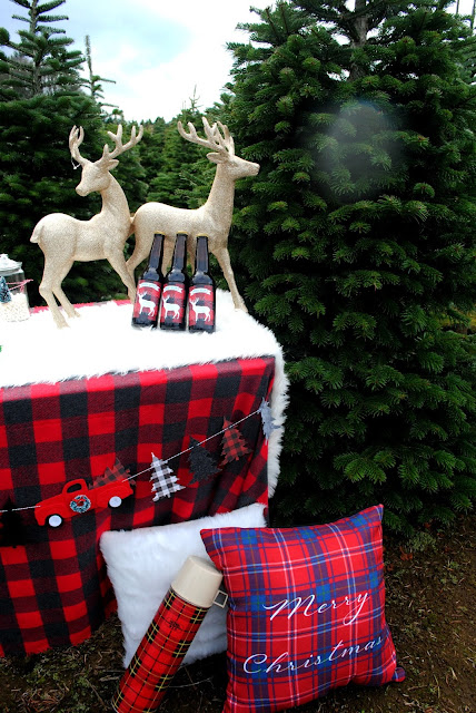 Plaid and Christmas just go together. More ideas over at FizzyParty.com
