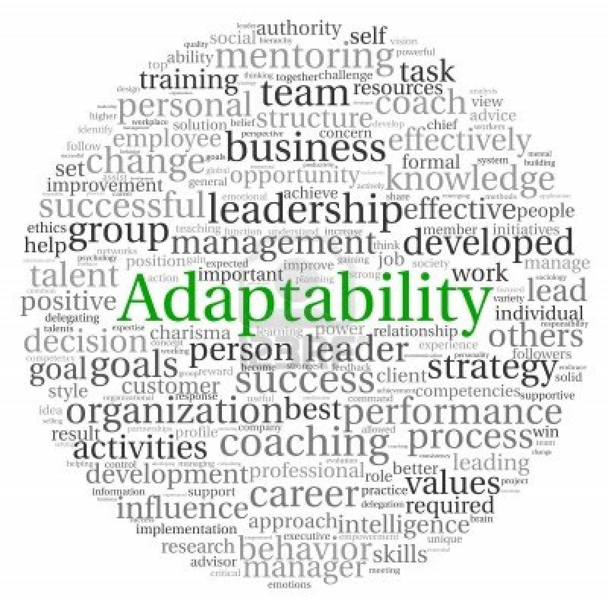 Ismail IT Fundamental : Explain why adaptability and