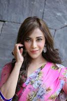 Angela Krislinzki Rogue Movie Fame Telugu Actress in Saree Backless Choli 125.JPG