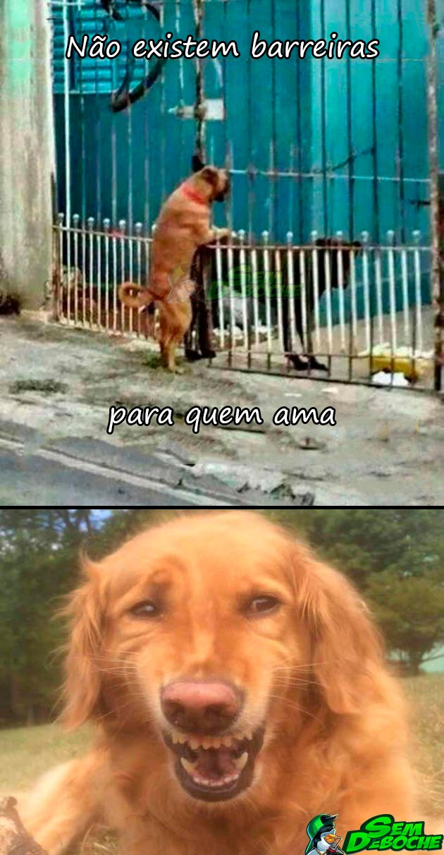 NÃO EXISTEM BARREIRAS PARA O AMOR