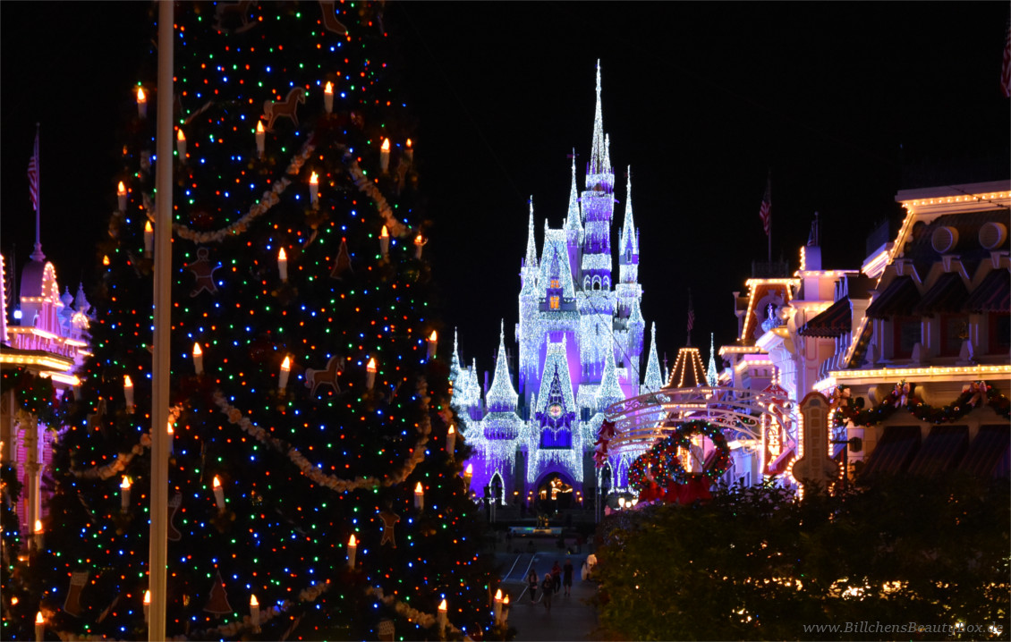 Disney World Orlando Florida - Mickey's Very Merry Christmas Party - Christmas Tree & Cinderella Castle