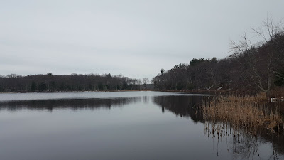 even on a grey day in March, there is a quiet beauty at DelCarte