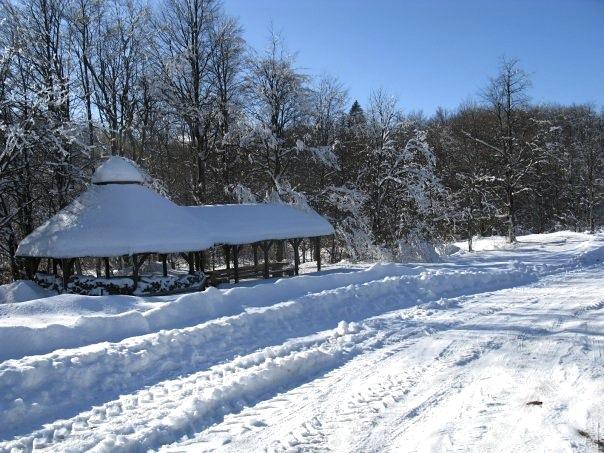 snow tracks in croatia