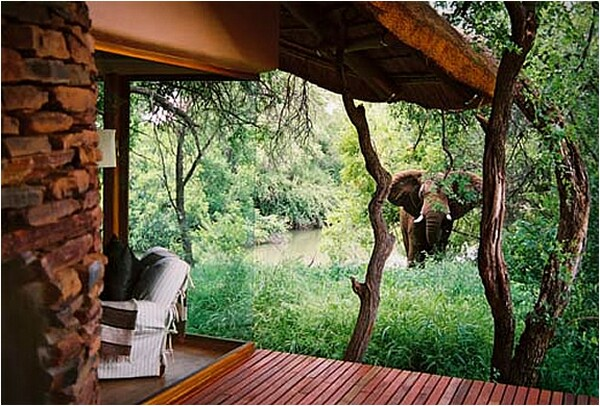 Makanyane Safari Lodge