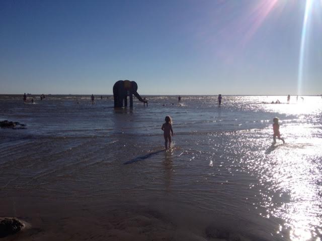 Pärnu elefantti ranta