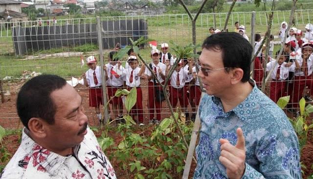 Ahok Tak Bisa Pecat Wali Kota Jakbar Yang Jadi Centeng Gara Gara Aturan lucu Satu ini