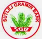 Sutlej Gramin Bank Recruitment