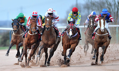 Wolverhampton, racing tips