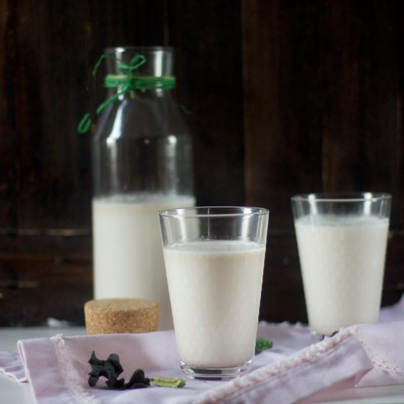 receta de bebida de avellanas con thermomix