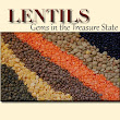 All about Lentils