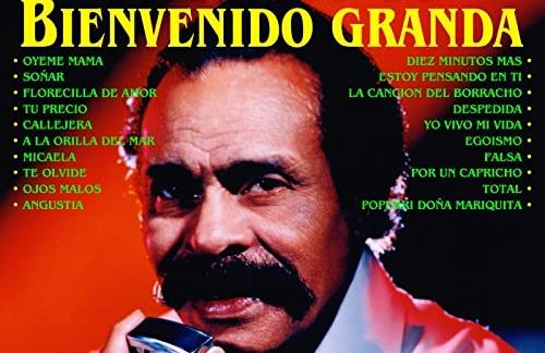 Pecaste De Infiel | Bienvenido Granda & La Sonora Matancera Lyrics