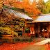 Nơi mùa thu đến sớm ở Nhật Bản.
