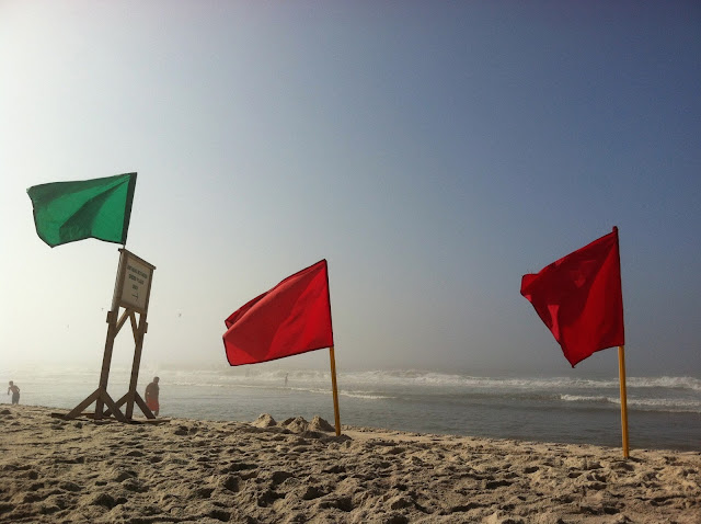 Red-Flags-at-Robert-Moses-Beach