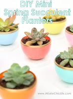 http://www.akailochiclife.com/2016/03/craft-it-diy-mini-spring-succulent.html