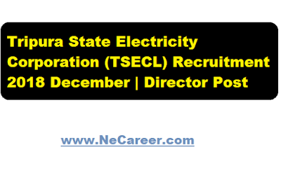 Tripura State Electricity Corporation (TSECL) Recruitment 2018 December | Director Post