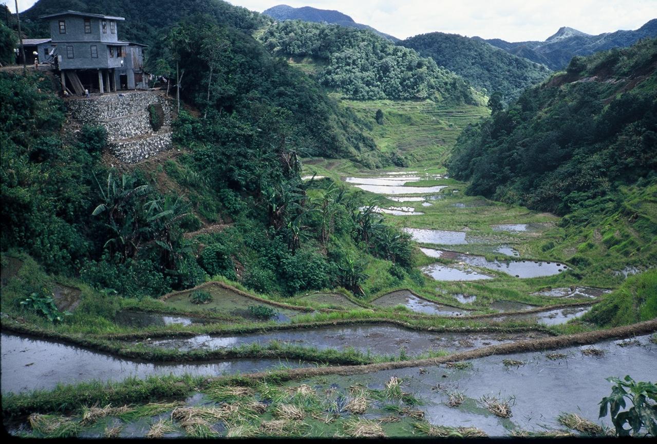 kahalagahan ng banawe rice terraces tagalog