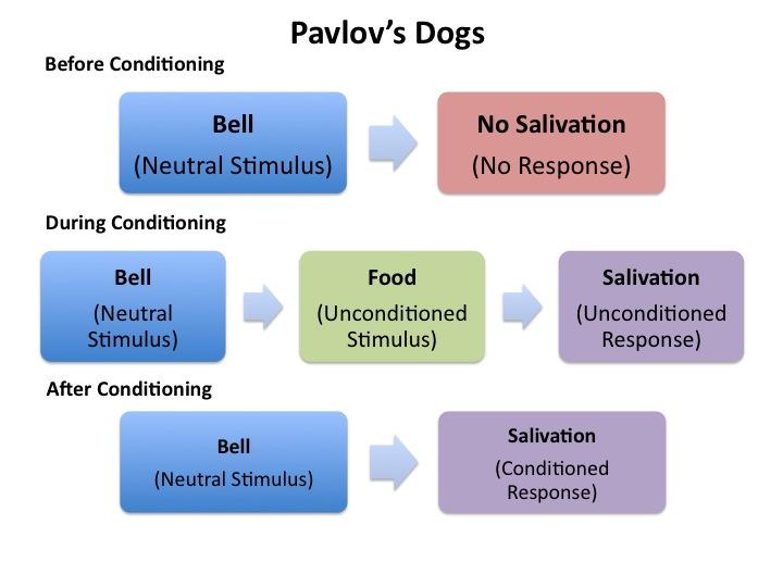 Pavlovian conditioning, phobias
