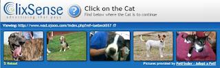 Deve-se clicar no gatinho para validar o anuncio