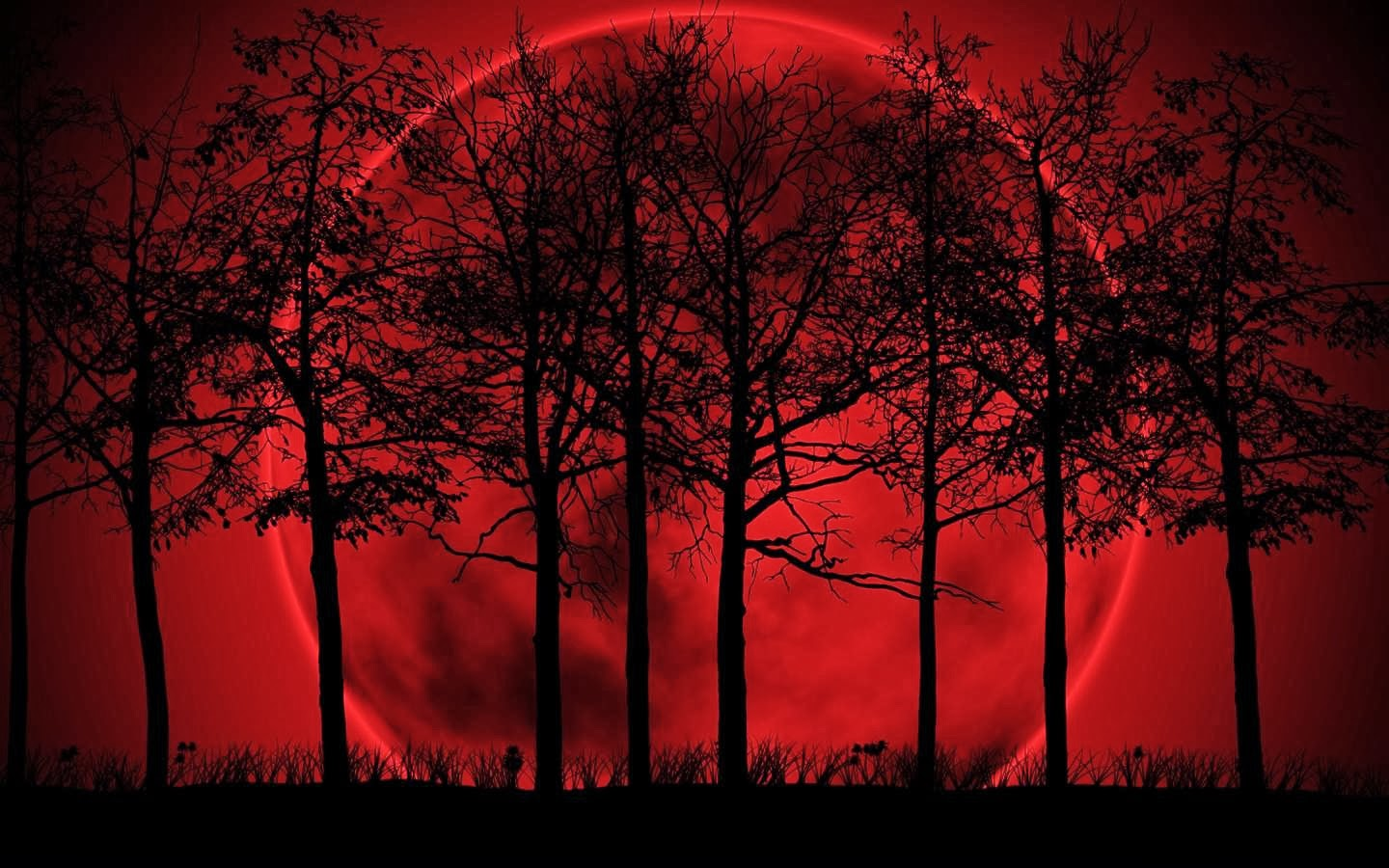 Red Moon Wallpaper Free Download For Android Smart Phones