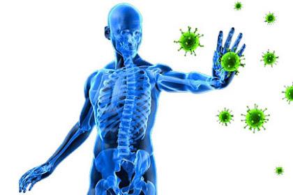 20 Cara meningkatkan daya tahan tubuh secara alami (teruji klinis)