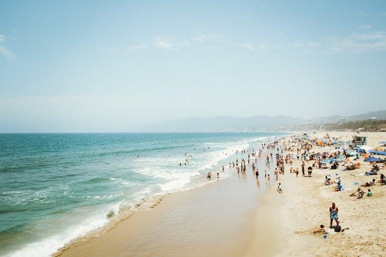 swimming, sea, health