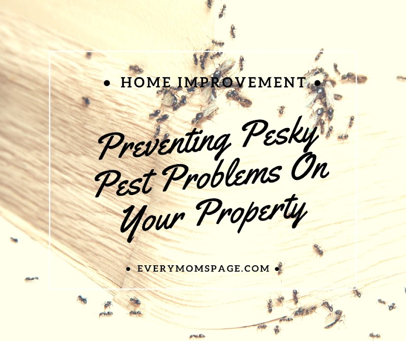 Preventing Pesky Pest Problems On Your Property
