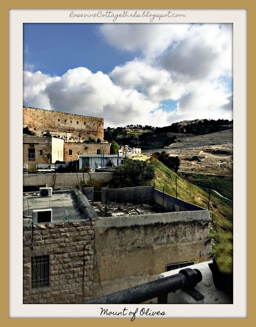 View from King David's palace roof to the rooves below. City of David Israel