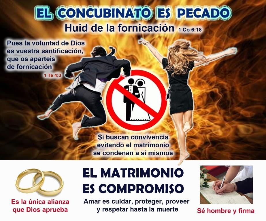 Ministerio Apoyo Bíblico El Concubinato Es Pecado