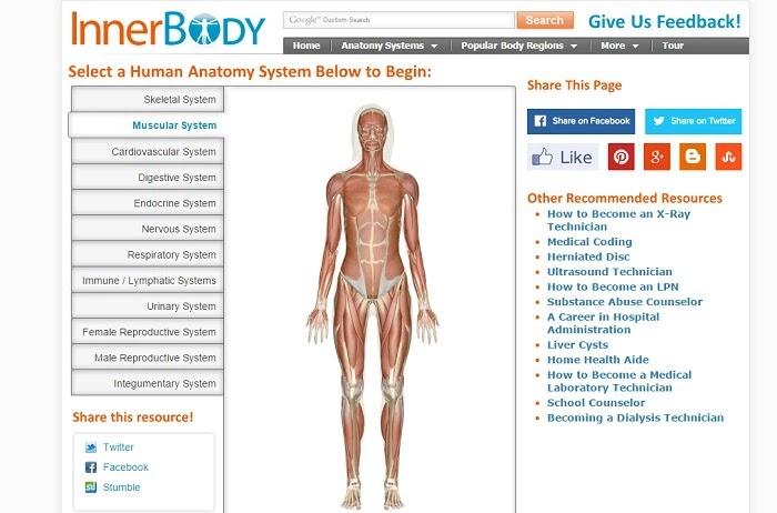 7 páginas educativas para estudiantes de Medicina y Anatomía | Oye ...