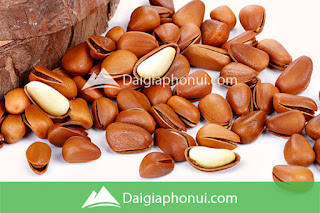 HẠT QUẢ THÔNG - PINE NUTS